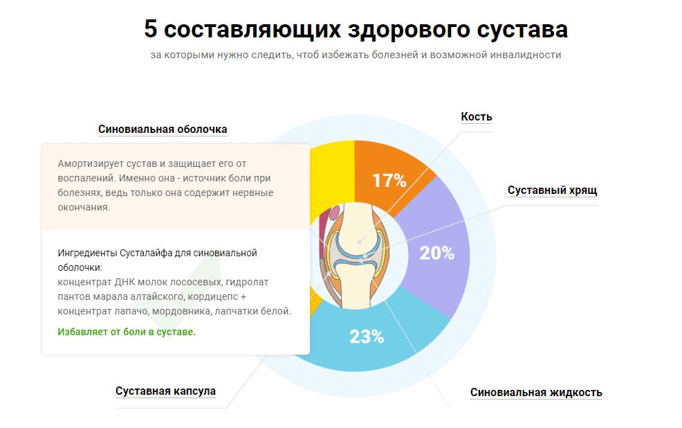 Составляющие здоровых суставов